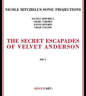 <i>The Secret Escapades of Velvet Anderson</i> 2014 studio album by Nicole Mitchell