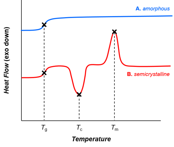 Thermal transitions in (A) amorphous and (B) semicrystalline polymers, represented as traces from differential scanning calorimetry. As the temperature increases, both amorphous and semicrystalline polymers go through the glass transition (Tg). Amorphous polymers (A) do not exhibit other phase transitions, though semicrystalline polymers (B) undergo crystallization and melting (at temperatures Tc and Tm, respectively). Thermal transitions in amorphous and semicrystalline polymers.tif