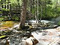 Tiltill Creek as it enters Tiltill Valley — near the best camping site in Tiltill Valley - panoramio.jpg