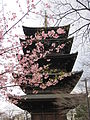 To-ji National Treasure World heritage Kyoto 国宝・世界遺産 東寺 京都165.JPG