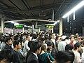 Tokyo Game Show 2008 (6081735373).jpg