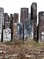 Tombes (26189759246).jpg