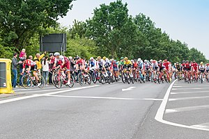 Tour de France 2017 Hauptfeld (35546903241).jpg