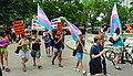 Trans Solidarity Rally and March 55442 (17793331602).jpg