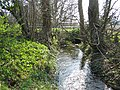 Tributary of the River Wylye - geograph.org.uk - 384929.jpg