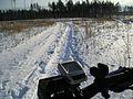 Tsentralnyy rayon, Tolyatti, Samarskaya oblast', Russia - panoramio (86).jpg