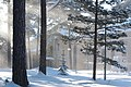 Tuiranpuisto Oulu 20100213.jpg