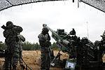 US, UK artillerymen participate in Operation Pegasus Cypher 150113-A-ZK259-059.jpg