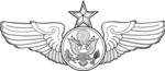 USAF Enlisted Senior Aircrew Badge.png