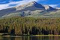 Una Lake August 2008.jpg