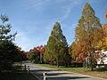 United States National Arboretum 7.JPG