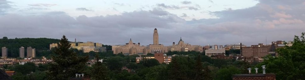 View of Université de Montréal's main campus, taken in June 2017. The majority of the university's facilities are located on this campus.