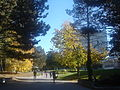 University of Waterloo campus.JPG