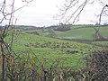 Usnagh, Beragh - geograph.org.uk - 90685.jpg