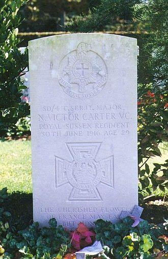 Nelson Victor Carter - Carter's grave