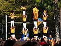 V catalana P1250625.jpg
