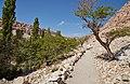 Valle de Jere-CTJ-IMG 5661.jpg
