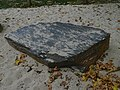 Vestec, Kamenný had, břidličný rohovec z Chomutovic.jpg