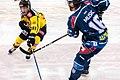 Vienna Capitals vs Fehervar AV19 -111.jpg