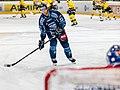 Vienna Capitals vs Fehervar AV19 -32.jpg