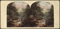 View in the Kauterskill Glove, Catskill Mountains, by London Stereoscopic View Co..png