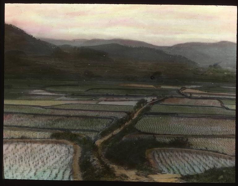 File:View overlooking rice paddies, China, ca.1917-1923 (IMP-YDS-RG224-OV1-0000-0045).jpg