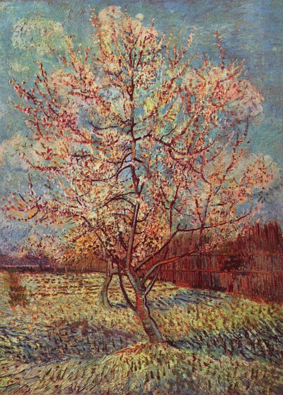Vincent Willem van Gogh 014