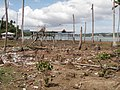 Viper Island After Tsunami 4140128.JPG