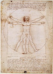 The Vitruvian Man, Leonardo's study of the proportions of the human body.