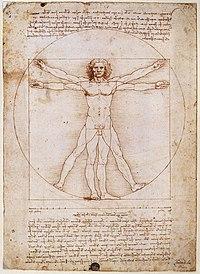 O homem vitruviano, interpretado por Leonardo da Vinci. Nele está sintetizado o espírito renascentista: clássico e humanista