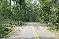 WE Entrance road (6096647103).jpg