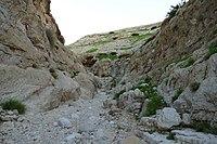 Wadi-Makukh-669.jpg