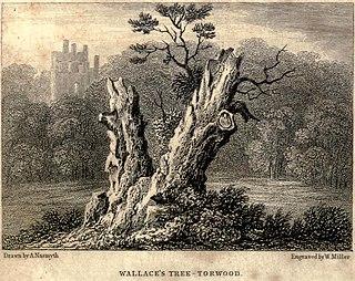Wallace Oak (Torwood)