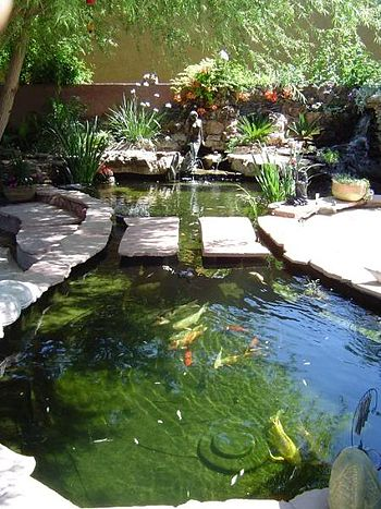 English: Koi pond with an extensive filtration...