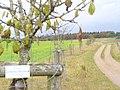 Wanderweg Ichterberg - geo.hlipp.de - 6325.jpg