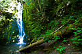 Waterfall (9452193436).jpg