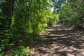 Waterfall Trail on Fossil Creek (29471729693).jpg