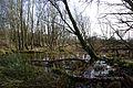 Waterleiding Duinen (16428608569).jpg