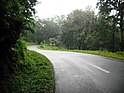 Wayanad Wildlife Sanctuary, Tholpetty Range - panoramio (3).jpg