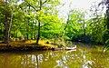 Weiher mit Anlegesteg und Kanu im Schillingspark.jpg