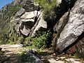 Welcome trickle of a stream on the hot slope north of Hetch Hetchy. - panoramio.jpg