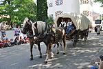 Welfenfest 2013 Festzug 107 30jg Krieg.jpg