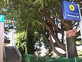 Wentworth Falls railway station entrance.JPG