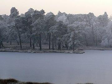 Winterimpression Schwarzes Wasser.jpg