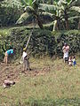 Women and Children at Work - Outside Kabale - Southwestern Uganda.jpg