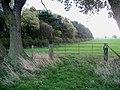 Woods on Whipley Moor - geograph.org.uk - 276002.jpg