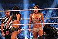 WrestleMania XXX IMG 5111 (13771014523).jpg