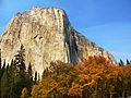 Yosemite National Park; 2007 (2).jpg