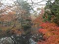 Yufuincho Kawakami, Yufu, Oita Prefecture 879-5102, Japan - panoramio (5).jpg