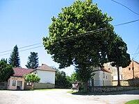 Zahorčice-náves.jpg